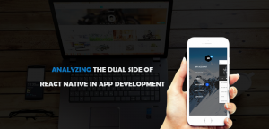 Classifying The Pros And Cons Of Using Reactive Native For Native App Development